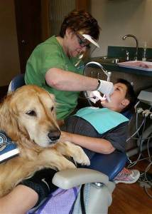 dentist-comfort-dog-today-160405-05_312930de9a82e5ae285e98da6278bb7d.today-inline-large